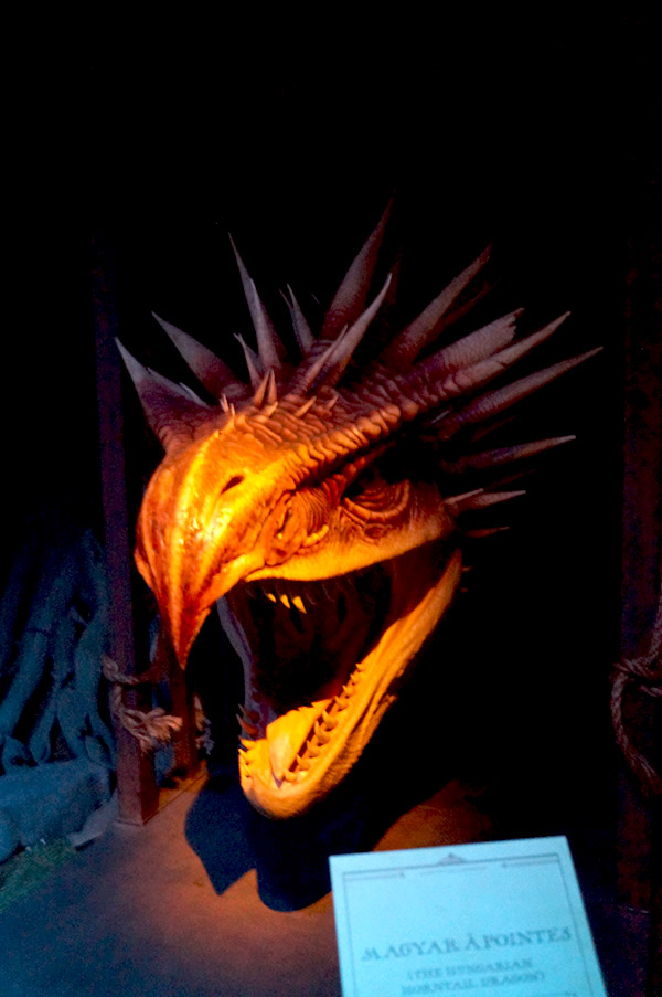 exposition harry potter dragon