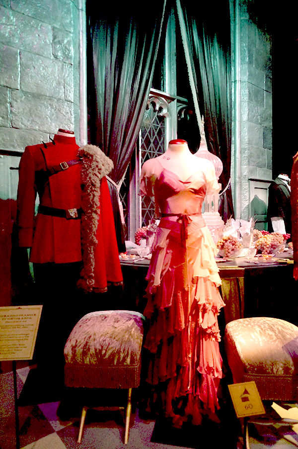 exposition harry potter costume bal de noel