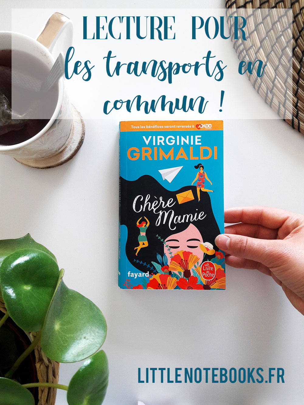 lecture transport en commun little notebooks